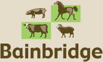 Bainbridge Veterinary Supplies Pty Ltd