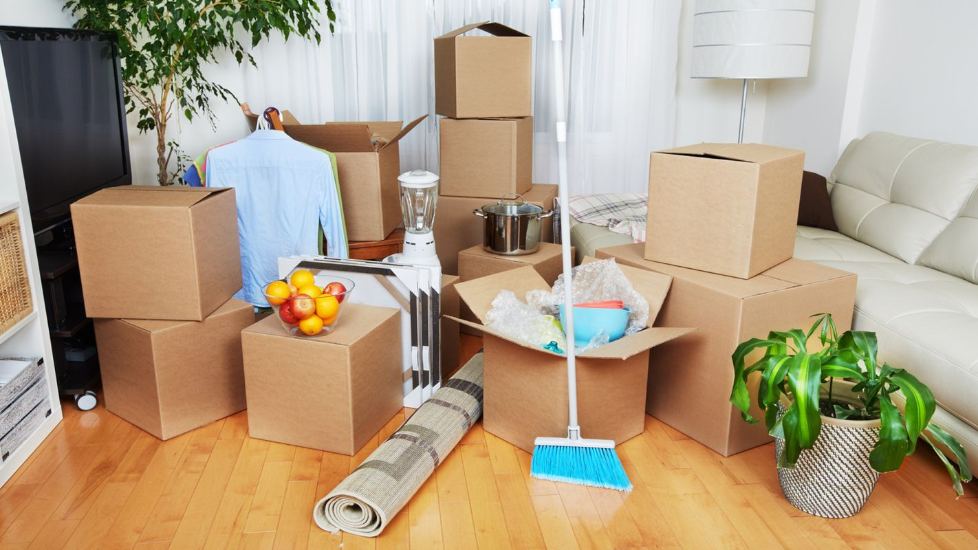 Move In Cleaning Services Fitzroy VIC